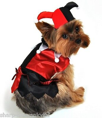 Pet Dog Cat Jester Circus Halloween Christmas Fancy Dress Costume Outfit XS-XL](Circus Dog Costume)