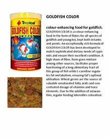 Double Pack Goldfish Colour 250ML/50G & Goldfish Colour Pellet 250ML/90G
