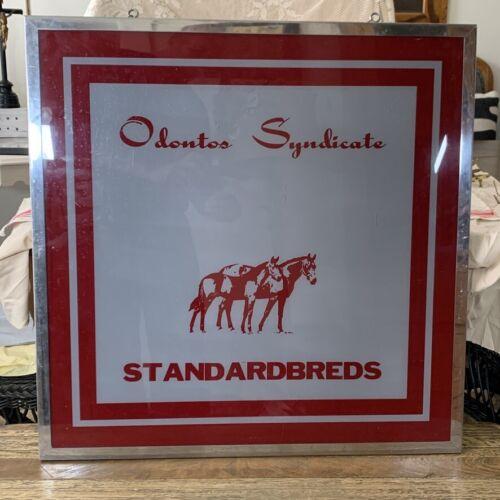 Vintage ODONTOS SYNDICATE STANDARDBREDS Equestrian Veterinary Dentistry Sign