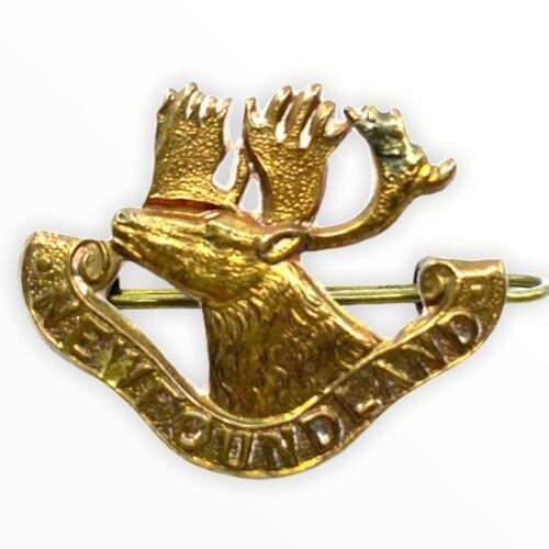 WW1 British BEF Canadian CEF Newfoundland Regiment Collar Single