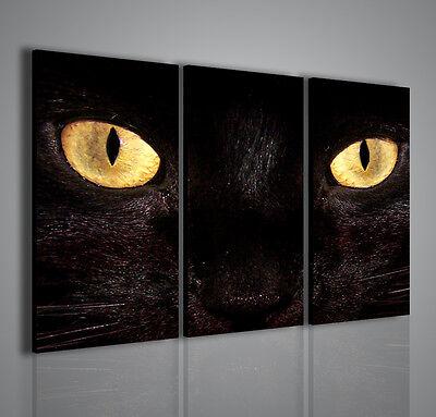 QUADRI MODERNI BLACK CAT QUADRO MODERNO ARREDAMENTO MODERNO 100x70cm