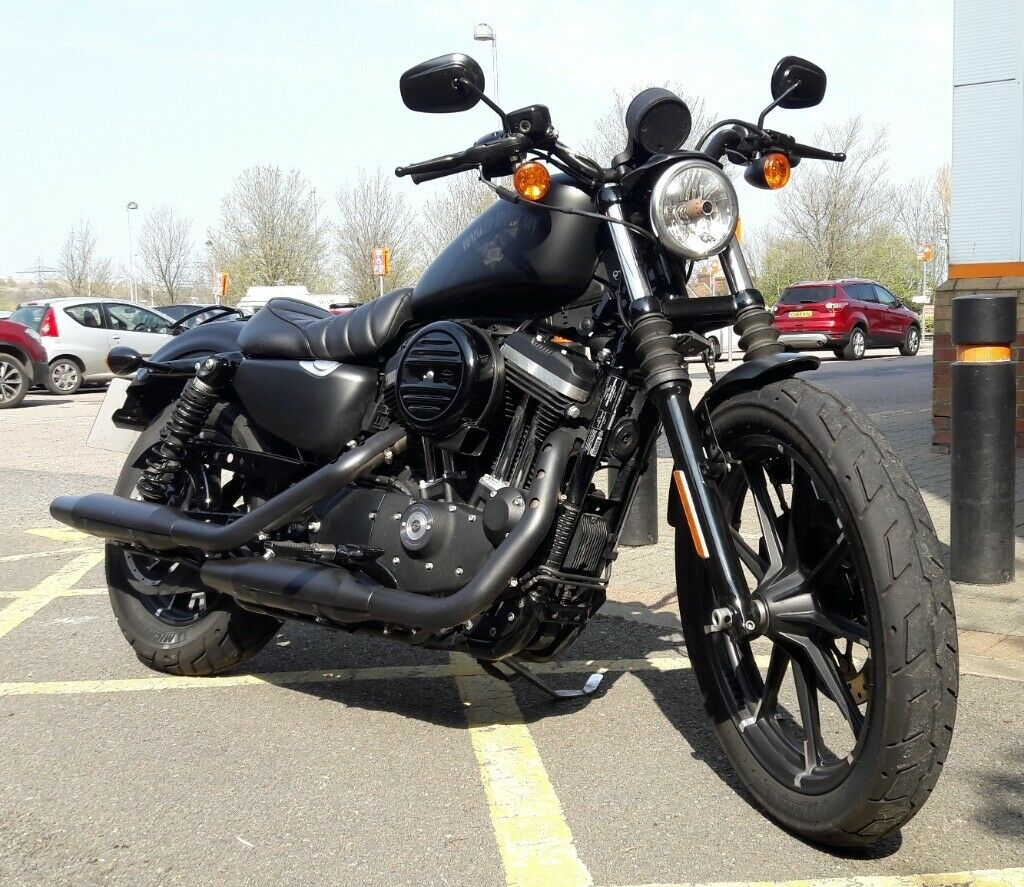 harley davidson sportster 883 iron | in margate, kent | gumtree