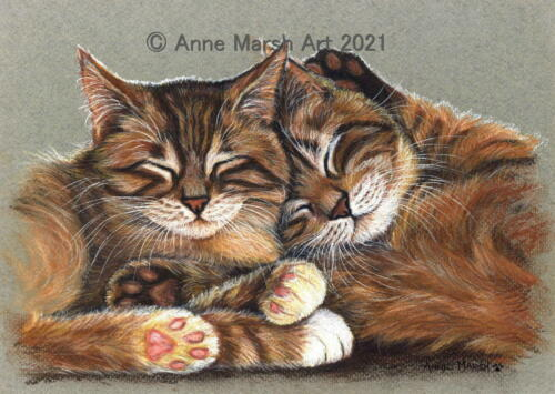 Open Edition Print Of Tabby Cat Painting Afternoon Snooze By Artist Anne Marsh