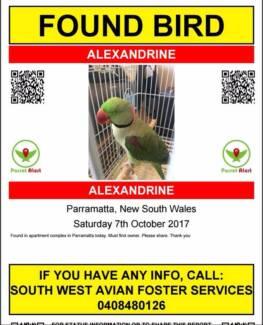 Alexandrine Found