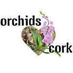 Orchids Love Cork