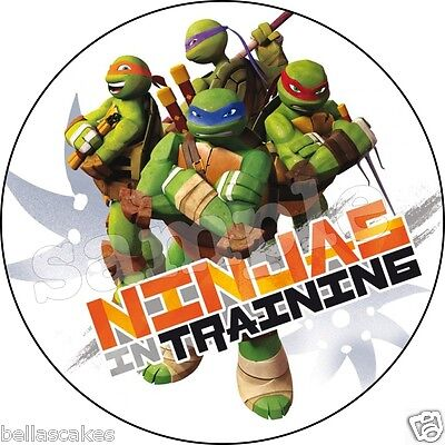 Eßbarer Tortenaufleger Teenage Mutant Ninja Turtles Party Tortenbild  Kuchen Zug
