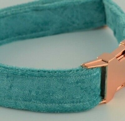 Luxury Jade Crushed Velvet Dog Collar with Rose Gold buckle