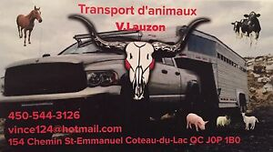 TRANSPORT D'ANIMAUX !!