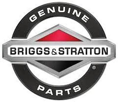 Genuine Briggs & Stratton 1753941YP V-BELT HA