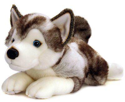 Keel Toys Soft Toy Cuddly  'Storm Husky' Puppy Dog 35cm,
