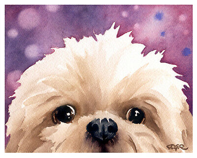 """SHIH TZU"" Watercolor Dog ART Print Signed by Artist DJR"