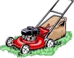Lawnmowers repairs, service and sales Wanniassa Tuggeranong Preview