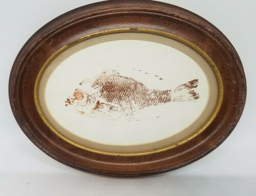 Vintage Fossil Fish Print in Custom Wooden Oval Frame by Art World Galleries