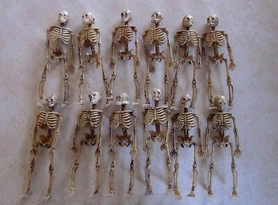 Lot Of  12  Miniature Dollhouse Fairy Garden 5 5 8  Skeletons