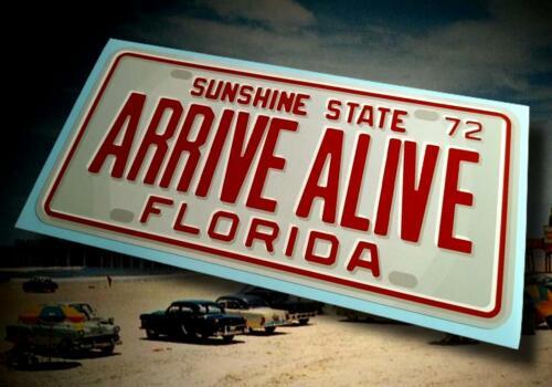 Vintage Style Florida ARRIVE ALIVE License Plate Sticker ☀ Circa 1972 ☀