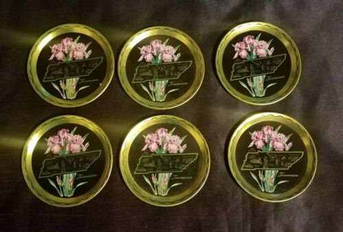 """VINTAGE Collectible Souvenir 3.5"""" TENNESSEE Drink Coasters (Set of 6)"""