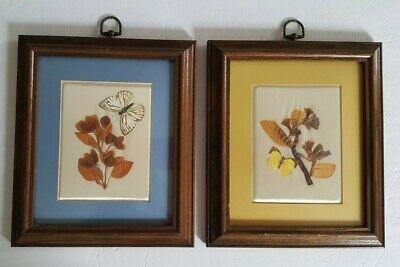 Vintage Belart Framed Pressed Flower Art Set of 2
