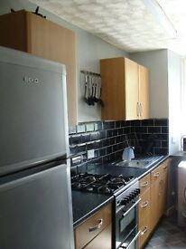Bright, spacious one bed flat to let