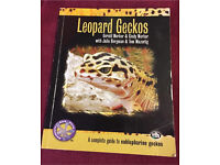 Leopard Gecko a complete guide to eublepharine geckos (can post)