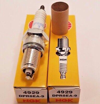 SET OF 2 NGK DPR8EA-9 Spark Plug 4929