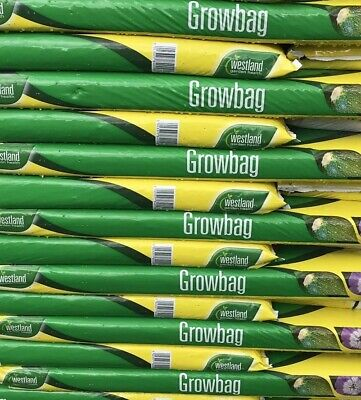 Westland Growbag COMPOST / Grow In Bags (Job LOT 12 Bags)    GROW BAGS WESTLAND