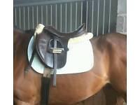 "Beautiful 17"" Saddle"