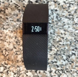 Fitbit Charge (Large)
