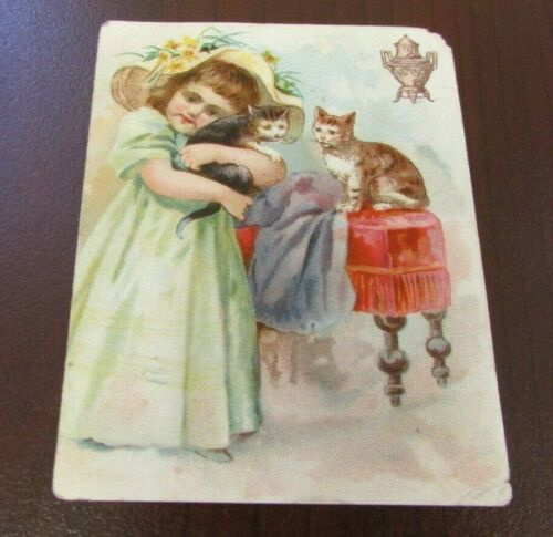 1880s DIllsworth Bros Girl with Kittens Trade Card Good Condition