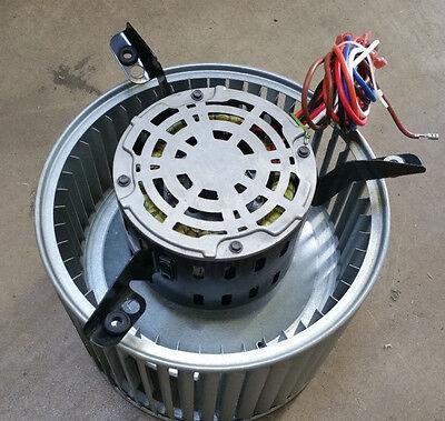 Goodman Amana Ydk-250l63223-01 Furnace Blower Motor 0131f00020 W Squirrel Cage
