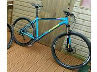 Upgraded trek 29er hardtail bike