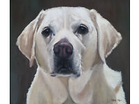 Portrait Artist - Kate Marr - Pets