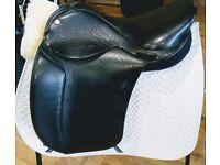 Swain Holistic Saddle