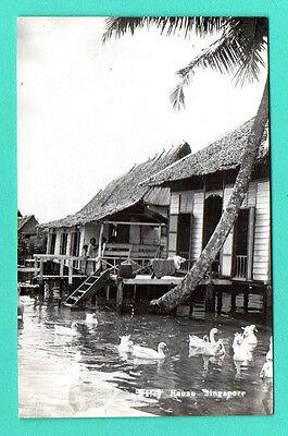 SINGAPORE VINTAGE PHOTO POSTCARD 660