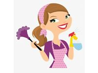 Clean & Shine Professional Cleaning Service, North Shields, ⭐⭐⭐⭐⭐