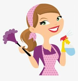 Domestic Cleaning availability - Mondays