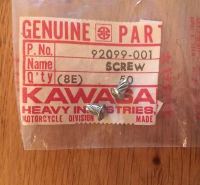 Kawasaki,92099 001,Steering screw rivet x 2, A1 A2 C2 F and G series H1 H2 KH500