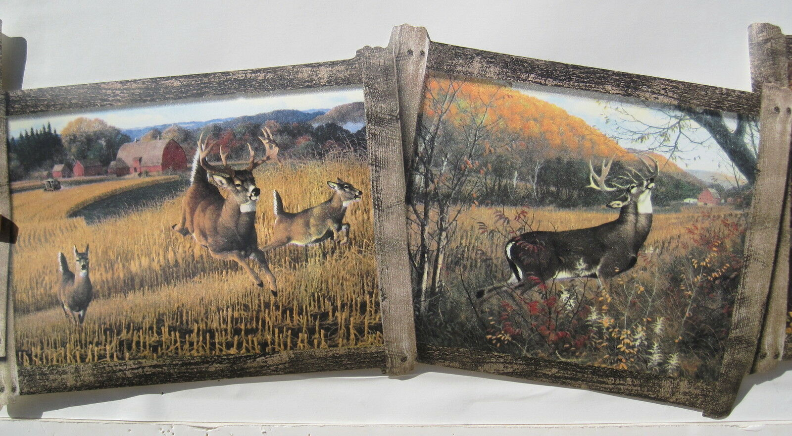 deer doe and buck hunting wallpaper border 8 1 2