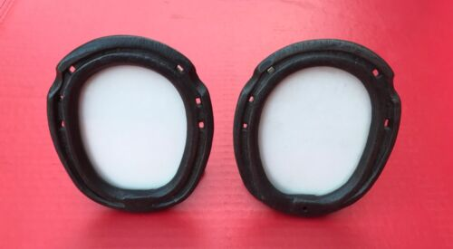 Pair Free Standing Horseshoe Picture Frames with Glass
