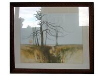 Two XL Pictures, beautiful framed print of natural