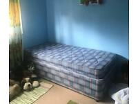 Free single bed and mattress
