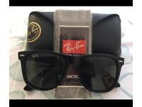 RayBan Wayfarer Sun glasses