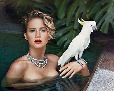 Jennifer Lawrence 8x10 Celebrity Photo #16