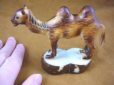 (tne-cam-260a) brown Camel calf desert wild TAGUA NUT nuts palm figurine carving