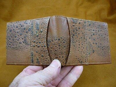 El1000 61 3  Genuine Cane Toad Brown Hide Leather Bifold Wallet Bufo Marinus