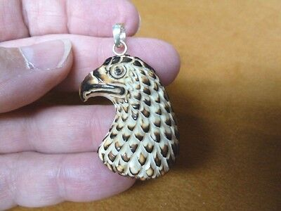 (j-eagle-43) Golden Eagle HEAD PENDANT heads bird head aceh bovine bone carving
