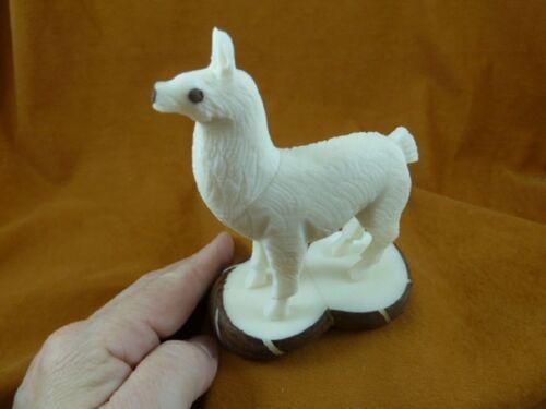(TNE-LLA-712A) little white baby Llama farm TAGUA NUT nuts palm figurine carving