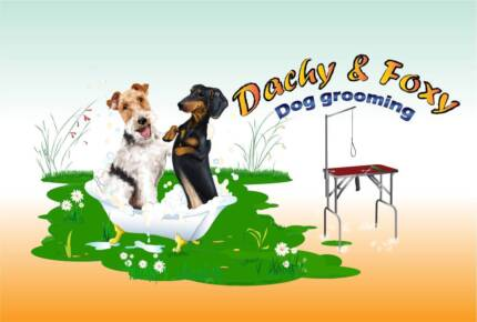 Dachy&Foxy Grooming Business
