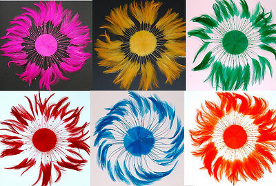 FULL PINWHEEL FEATHERS - Top Quality Hackle MANY COLORS (Halloween/Costume)](Top Quality Halloween Costumes)
