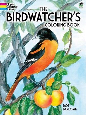 Coloring Book For Adults The Birdwatcher's Young Adult Birds Coloring Book (For Adults)