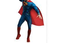 Superman men's fancy dress Halloween costume